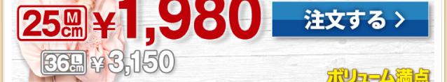 よくばりクォーター M1,980円(税別)L 3150円(税別)